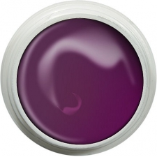 Żel UV kolorowy ART 8g plum garden